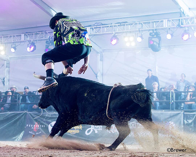 Weston Rutkowski performs an Ol Tuck to kick off his short-round fight with 12X and Costa's Bad Intentions. Rutkowski was 90.5 points to win the Bullfighters Only Las Vegas Championship title. (TODD BREWER PHOTO)