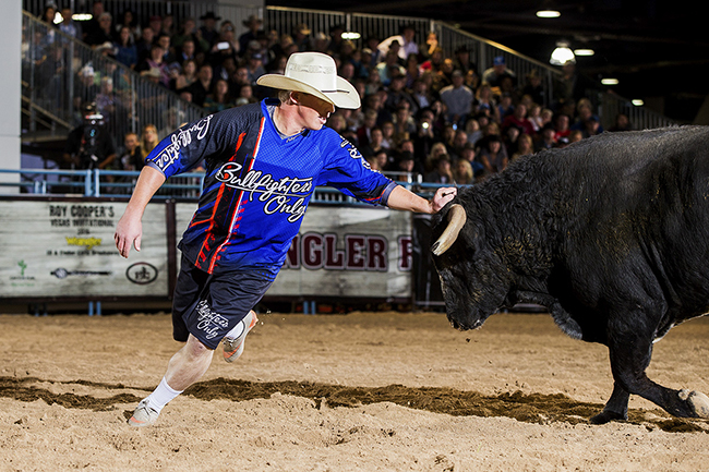 Zach Call makes a round with a bull during the 2016 Bullfighters Only Roughy Cup in Las Vegas. The Nebraska man has quickly made himself one of the best in the world. (TODD BREWER PHOTO)