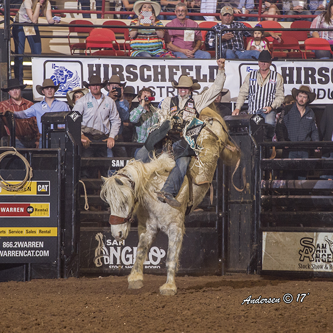 Austin Foss matches moves with Powder River Rodeo's Craig at Midnight for 89 points Saturday night to take the bareback riding lead at the San Angelo Stock Show and Rodeo. (RIC ANDERSEN PHOTO)