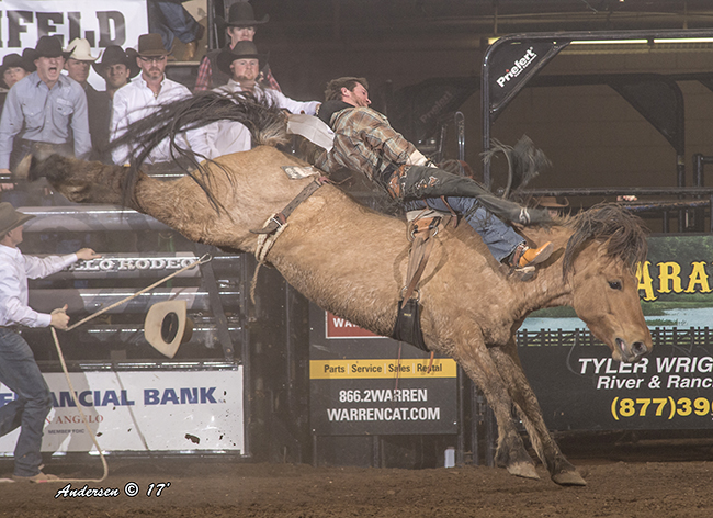 Chad Rutherford rides Pete Carr Pro Rodeo's Painted River for 91.5 points Friday night to win the short round and the average title at the San Angelo Stock Show and Rodeo. (RIC ANDERSEN PHOTO)