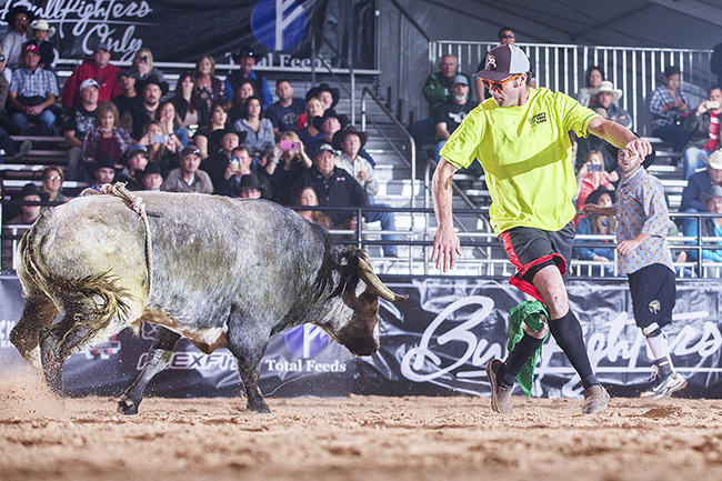 Toby Inman goes toe-to-toe against a fighting bull during a freestyle fight in Las Vegas this past December. Inman will be one of nine men competing this weekend at the Bullfighters Only event in Brighton, Fla. (TODD BREWER PHOTO)