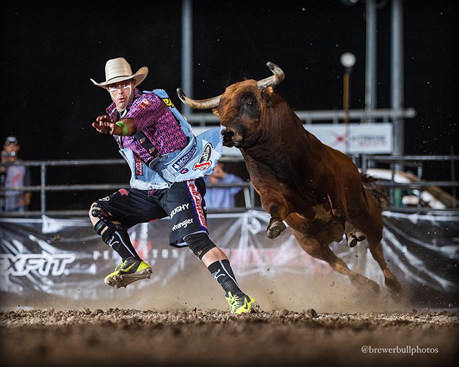 Dusty Tuckness slips past 12X and Costa Fighting Bulls' Spitfire en route to a 94.5-point bullfight on Saturday night during the Bullfighters Only Flexfit Invitational presented by the Lewiston Roundup Association. (TODD BREWER PHOTO)