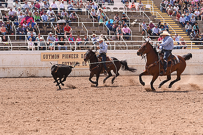 Charly Crawford, right, and Joseph Harrison put the finishing touches to a winning weekend at the Guymon Pioneer Days Rodeo. The tandem shared the victory. (JAMES PHIFER PHOTO)