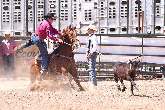 A big part of Ryan Jarrett's Prairie Circuit tie-down roping lead came with his performance at the Guymon (Okla.) Pioneer Days Rodeo in May. (JAMES PHIFER PHOTO)