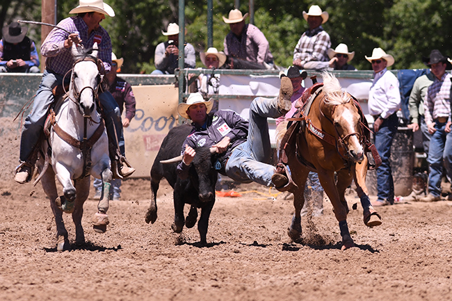 Ty Erickson wrestled his way into the Guymon Pioneer Days Rodeo lead. On Friday, he scored a 4.0-second run to hold a 1.4-second lead over the No. 2 cowboy. He has earned $97,000 already this season. (JAMES PHIFER PHOTO)