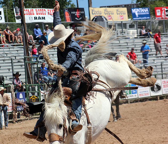 The top bronc riders in North America are expected to be in the field for the inaugural Hard Grass Bronc Match, set for 6 p.m. July 29 in Pollockville, Alberta.