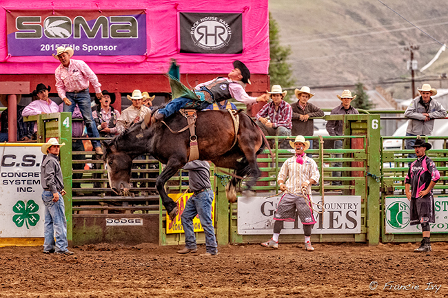 Stace Smith Pro Rodeo, an 11-time stock contractor of the year, will have a great set of bucking animals and high level rodeo production at Cattlemen's Days. (ALLAN IVY PHOTO)