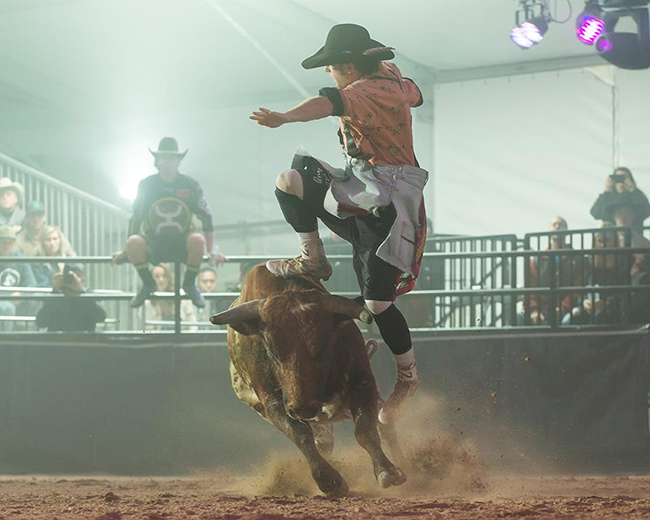 Beau Schueth jumps a bull during the Las Vegas Championship last December. He's been riding a hot streak this month. (TODD BREWER PHOTO)