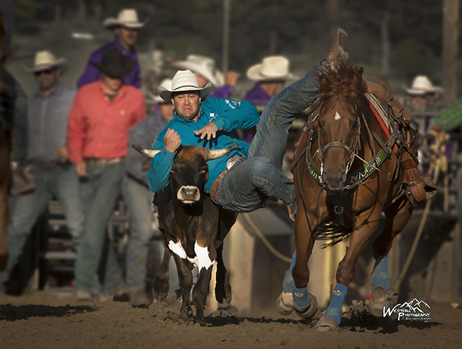 Four-time NFR qualifier Billy Bugenig dismounts two-time horse of the year Wick en route to a first-round leading 3.8-second run at Rooftop Rodeo in Estes Park. (GREG WESTFALL PHOTO)