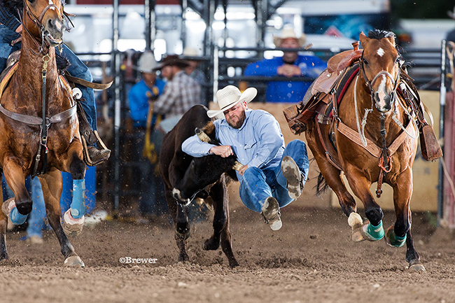 Brian Snell of Wheatland, Wyo., manhandles his steer en route to a 5.0-second run on Wednesday night to take the early lead at the Eagle County Fair and Rodeo. (TODD BREWER PHOTO)
