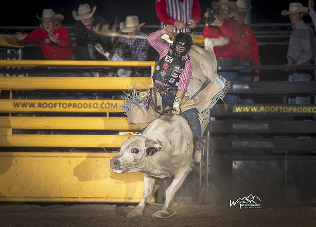 Scottie Knapp rides Cervi's Po-Boy for 87 points Thursday night to take the bull riding lead at Rooftop Rodeo in Estes Park, Colo. (GREG WESTFALL PHOTO)