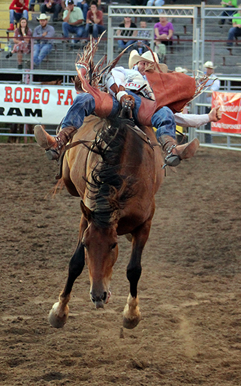 Mason Clements rides Frontier Rodeo's Lizzard Medicine for 84 points Thursday and is third in bareback riding at Dodge City Roundup Rodeo.