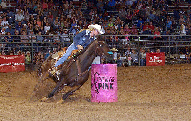 The list of entries for this year's Austin County Fair and Rodeo has increased by more than 60, which is a good indication of the type of event held in Bellville, Texas. (COURTESY PHOTO)
