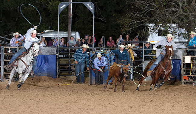 Clayton Van Aken, right, and Richard Durham stopped the clock in 4.8 seconds Saturday night to finish fourth in the team roping at the Austin County Fair and Rodeo. (PEGGY GANDER PHOTO)