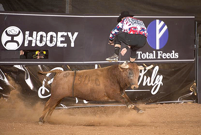 Weston Rutkowski performs a flat-footed jump over Rockin' B & Magnifica's Cabeza Dura to begin their bout Saturday night. Rutkowski scored 91.5 points to win BFO-Austin and add to his Pendleton Whisky World Standings lead. (CLICK THOMPSON PHOTO)