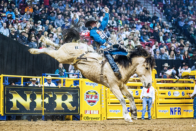 Orin Larsen rides Pickett Pro Rodeo's Uncapped for 85 points to place sixth in Friday's second round of the Wrangler National Finals Rodeo. (TODD BREWER PHOTO)