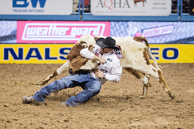 Tyler Pearson wrestles his steer to the ground in 4.0 seconds to finish third during Saturday's third round of the National Finals Rodeo. He is second in the world standings and is in a tight race for the world championship. (TODD BREWER PHOTO)