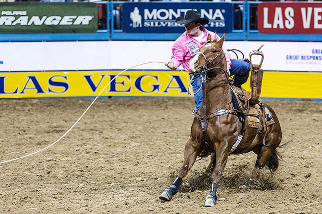 Ryan Jarrett dismounts his horse, Snoopy, en route to an 8.1-second run during Monday's fifth go-round at the Wrangler National Finals Rodeo. He had an 8.1-second run and finished sixth in the round. (TODD BREWER PHOTO)