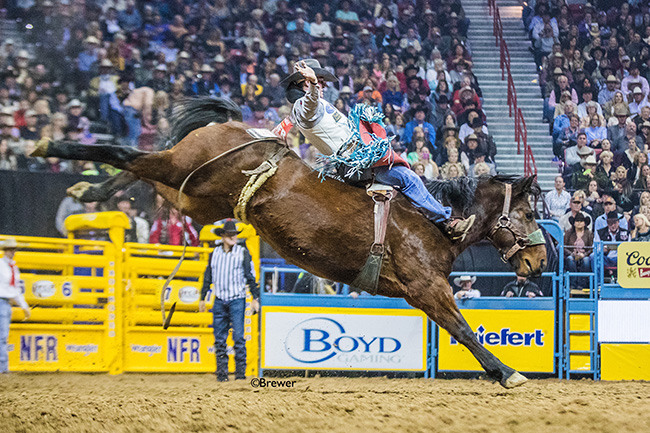Reigning world champion Tim O'Connell rides Korkow Rodeo's Harry's Girl for 85.5 points to share second place Wednesday in the seventh go-round of the Wrangler National Finals Rodeo. (TODD BREWER PHOTO)