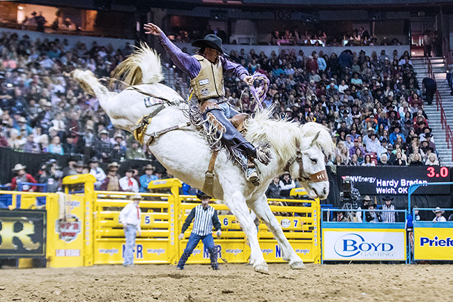 Hardy Braden rides Hi-Lo Pro Rodeo's Garden City Gal for 88 points to win Wednesday's seventh round of the Wrangler National Finals Rodeo. (TODD BREWER PHOTO)