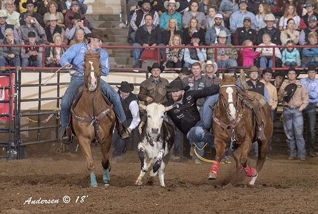 Jacob Talley makes a 4.0-second run Friday night to close out his winning runs through the San Angelo Stock Show and Rodeo. He finished with three runs in a cumulative time of 11.5 seconds to win the crown. (RIC ANDERSEN PHOTO)