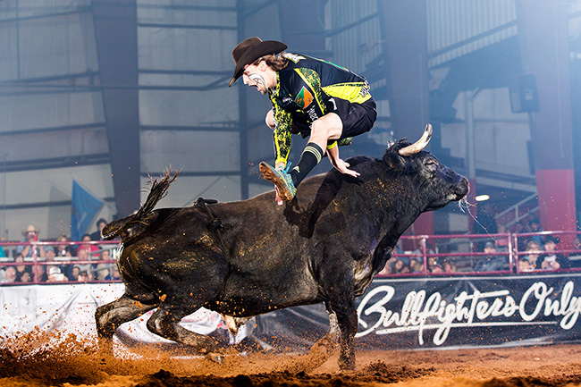 Schell Apple returns to the Bullfighters Only event this weekend in conjunction with the San Angelo Stock Show and Rodeo. Apple, who finished second a year ago, understands the battle before him if he's going to claim the top prize. (TODD BREWER PHOTO)