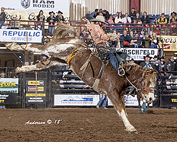 Wade Sundell rides Powder River Rodeo's Morning Tea for 88.5 points to take the saddle bronc riding lead in San Angelo. (RIC ANDERSEN PHOTO)