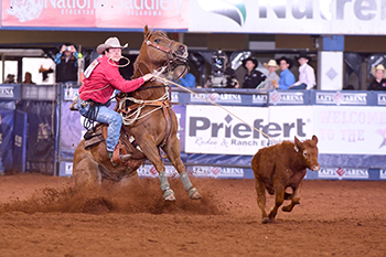 Myles Neighbors roped his third calf of the weekend in 12.5 seconds, and that was one of the 12 runs that guided him to the Jr. Ironman title. (JAMES PHIFER PHOTO)