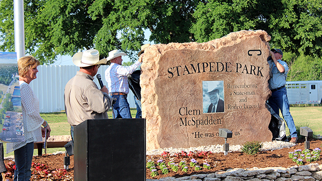 The new stone, bearing the likeness of legendary announcer and statesman Clem McSpadden, is put on display near the front of the under-renovation Stampede Park.