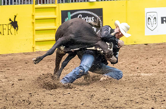 Northwestern Oklahoma State University's Cody Devers wrestles a steer to the ground during last week's College National Finals Rodeo in Casper, Wyo. Devers finished second in the nation in steer wrestling, and the Rangers placed third in the men's team race. (PHOTO BY THE TURQUOISE LENS)