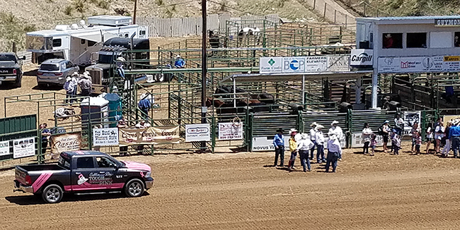 Tuffy, the Gunnison Cattlemen's Days Tough Enough to Wear Pink transportation vehicle, has been a big help to ease the minds of breast cancer patients and their families.