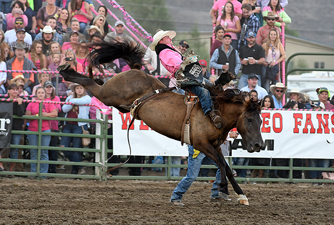 Craig Wisehart of Kersey, Colo., not only took the bareback riding lead at the Gunnison Cattlemen's Days PRCA Rodeo, but also he earned $1,500 for wearing pink and having the high-point ride in bareback riding. With the help of sponsors, a local donation and $250 per event from Wrangler, the committee was able to give out $7,500 Thursday night. (PHOTO BY ROBBY FREEMAN)
