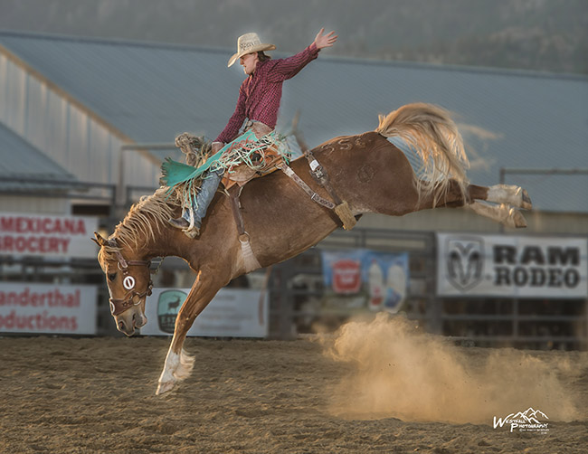 Colt Gordon of Comanche, Okla., rides Cervi's The Natural for 81.5 points to take the lead in saddle bronc riding at Rooftop Rodeo in Estes Park, Colo. (GREG WESTFALL PHOTO)