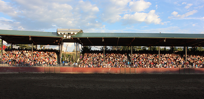 A crowd packs into the stands at Johnette Phillips Arena at the Eagle County Fairgrounds. The Eagle County Fair and Rodeo has a grand history, now eight decades in the making.