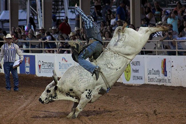 Fairgoers show up strong to the Lea County Fair and Rodeo. There is a tremendous value that comes with the $10 adult gate admission, whether it's Xtreme Bulls on Tuesday night or Martina McBride on Saturday.