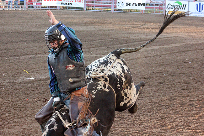Dodge City-born Tyler Hessman rides Frontier Rodeo's Amigo for 85.5 points to place Tuesday night at Dodge City Xtreme Bulls.