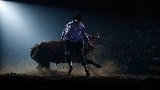 The raw power and agility that is freestyle bullfighting will be on full display during the Bullfighters Only Wichita Invitational, which takes place at 7:30 p.m. Saturday at Park City's Hartman Arena. (PHOTO BY TODD BREWER)
